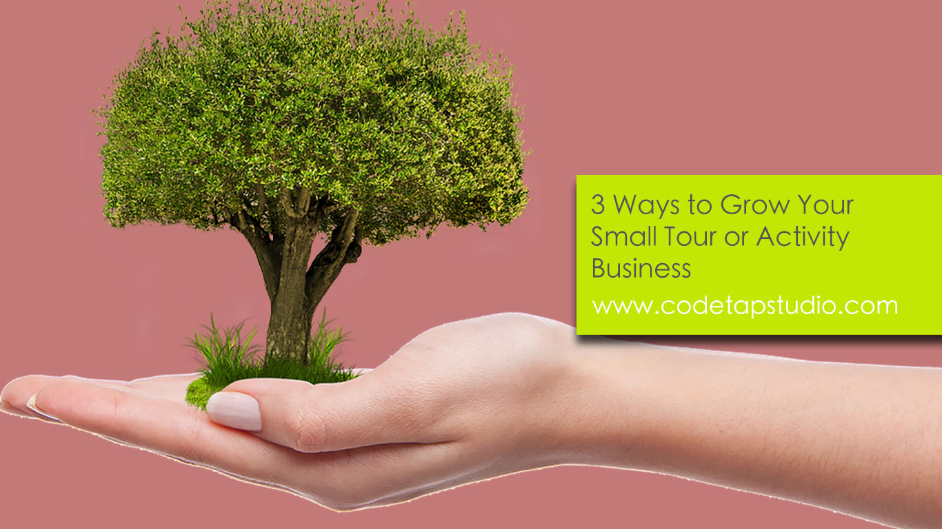 3 Ways to Grow Your Small Tour or Activity Business
